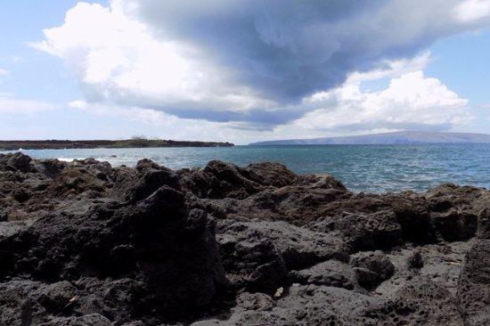 Ahihi-Kinau Natural Area Reserve: Looking to left of beach.
