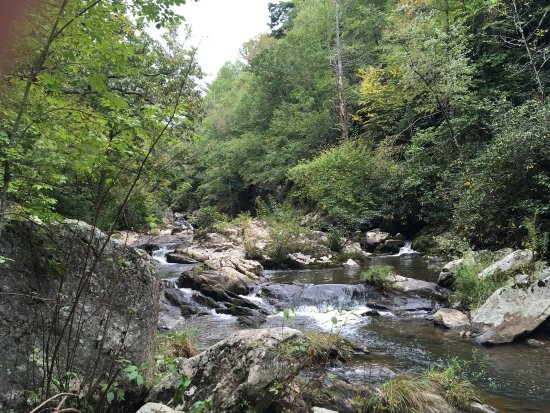 Bottom Creek Gorge Roanoke 2019 All You Need To Know