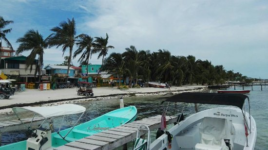 Caye Caulker, Belize: IMG-20160925-WA0004_large.jpg