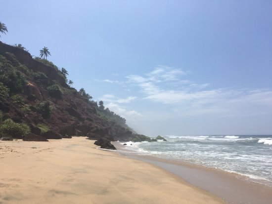 Varkala SeaShore Beach Resort: photo8.jpg