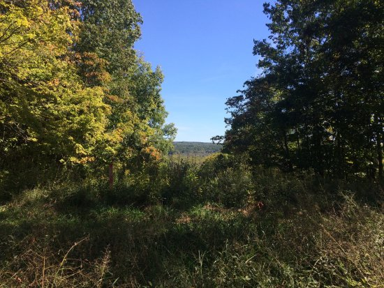 Brecksville, OH: Scenic views along the Buckeye Hiking Trail
