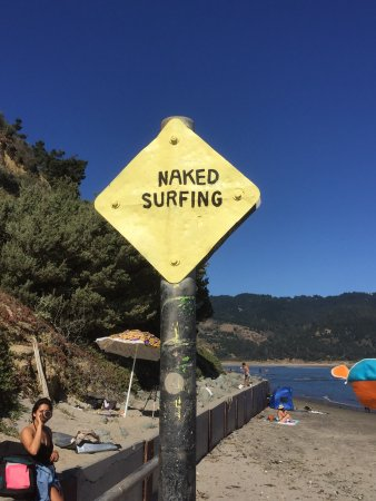 """Bolinas, Kaliforniya: Explanation on the other side: aha, this is what """"groin"""" means."""