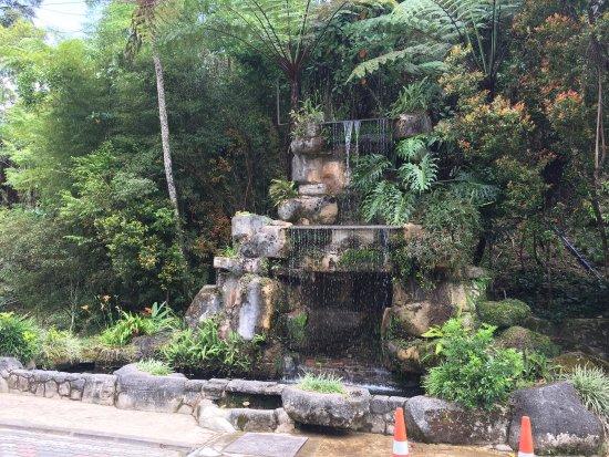Tanah Rata, Maleisië: photo5.jpg