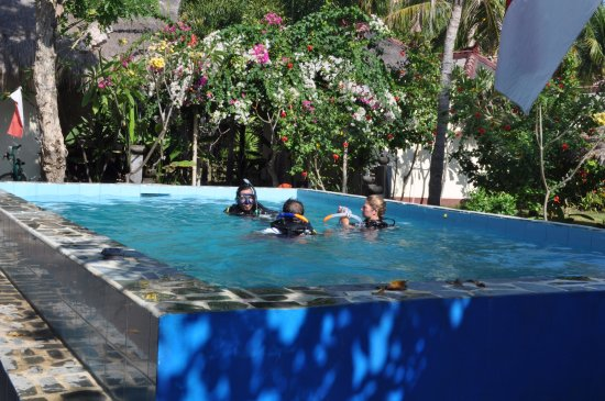Gili Air, Endonezya: our beautiful new pool designed for diving 2.5 metres deep