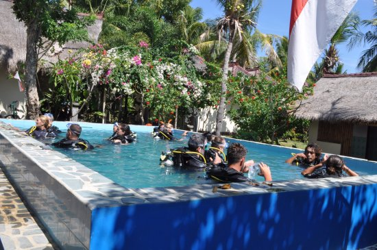 Gili Air, Indonesia: room for everyone in ADA pool