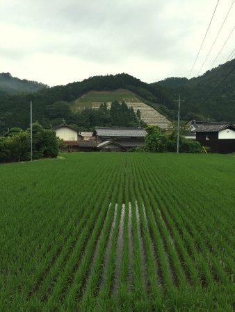 Nokishita Toshokan: Village of Nishiawakura