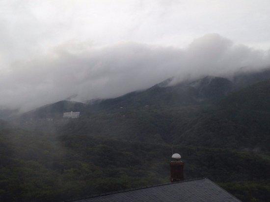 Hyatt Regency Hakone Resort and Spa: 雨で水墨画のような景色