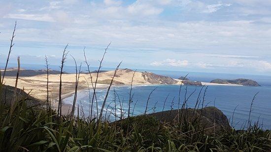 الجزيرة الشمالية, نيوزيلندا: Tasman sea 