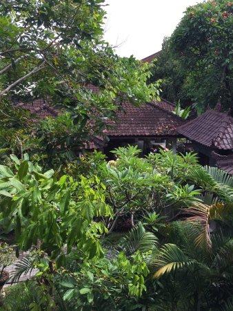 Bali Wirasana Hotel: photo2.jpg