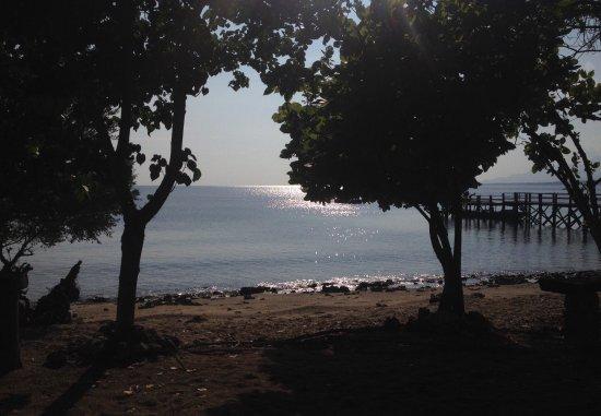 西巴厘岛国家公园照片