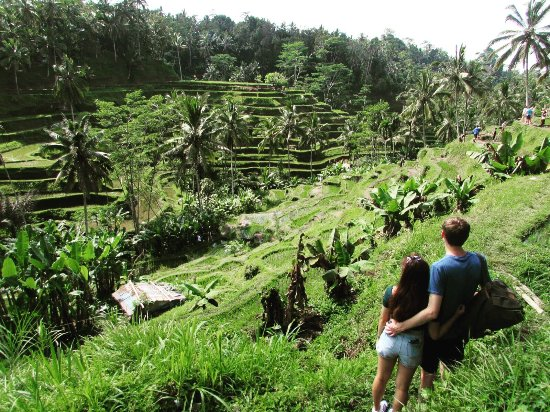 Agus Bali Private Tours: The Best Tour guide on the island