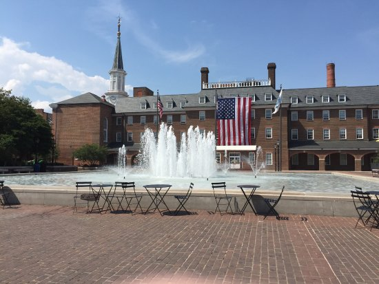 Alexandria, VA: photo6.jpg
