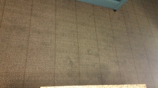Hotel Blue: Carpet in the 2nd room, aerial view (kinda).