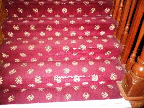 Esplanade Hotel: stair carpet to first floor