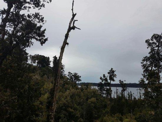 Hokitika, New Zealand: received_10209901814236991_large.jpg