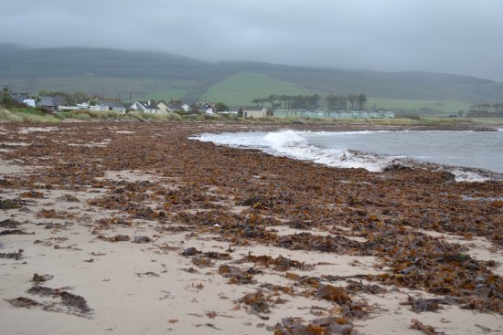 Campbeltown, UK: photo3.jpg