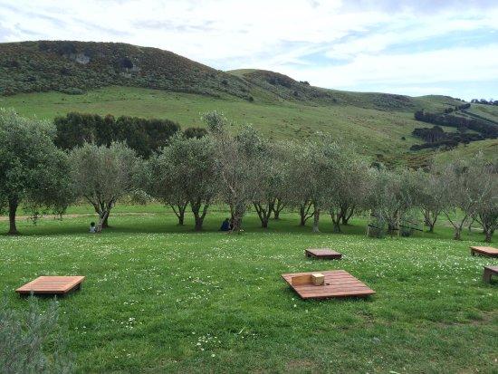 Onetangi, نيوزيلندا: Stonyridge Vineyard