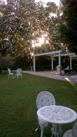 Tea & Niceties: Pergola