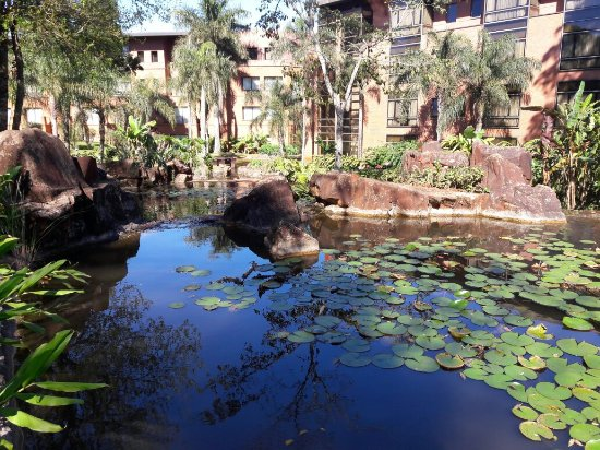 Iguazu Grand Resort, Spa & Casino: 20160920_092428_large.jpg