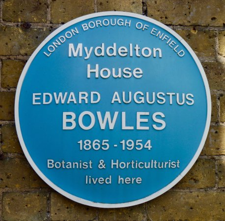 Enfield, UK: E. A. Bowles plaque