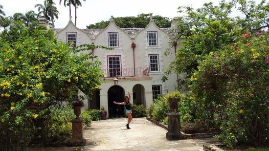 Saint Peter Parish, Barbados: la casa coloniale