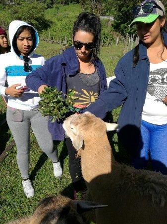 Bajo Mono Camping Site: Sendero agroecoturístico a la Cascada El Tatica