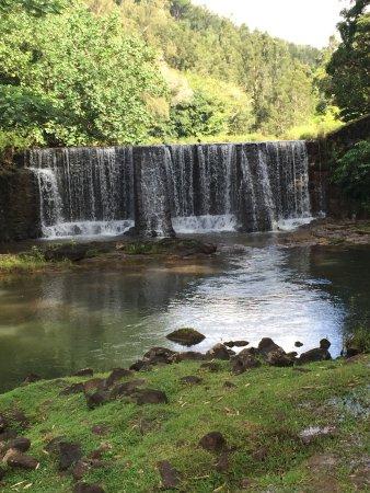 Kilauea, Гавайи: Wait Kia Loop provided a pleasant and interesting walk on a hot day.