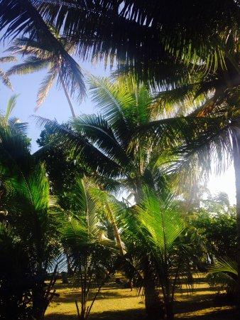Robinson Crusoe Island Resort ภาพถ่าย