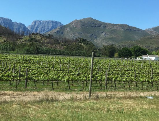 Franschhoek, África do Sul: photo2.jpg