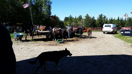 Adirondack Equine Center: 20160925_130446_large.jpg