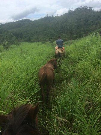 ซานอิกนาซิโอ, เบลีซ: Horseback riding