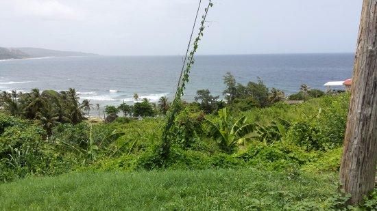 Bathsheba Beach dalla strada
