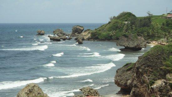 le rocce di Bathsheba Beach