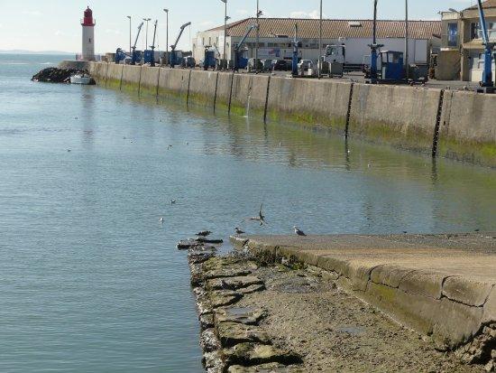 Saint-Pierre-d'Oleron, Fransa: Port avec phare au fond