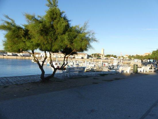 Saint-Pierre-d'Oleron, Francia: Le port au lever du soleil