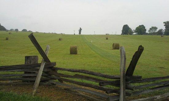 New Market, VA: Bushomg Farm