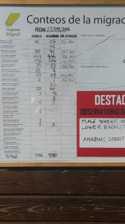 Huerta Las Terrazas : notice board list raptors seen the day before at cazalla obs point.