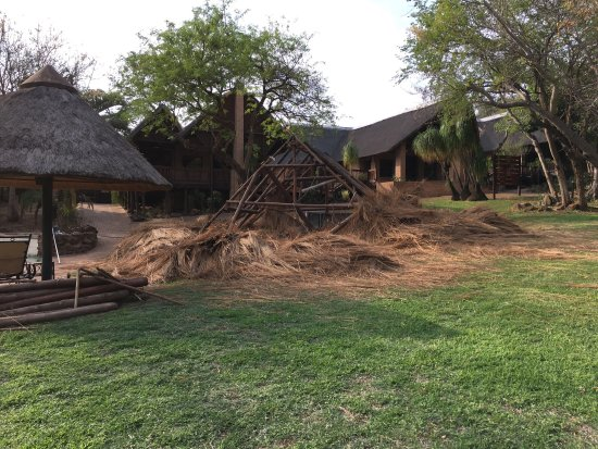 Malelane, Afrique du Sud : photo6.jpg