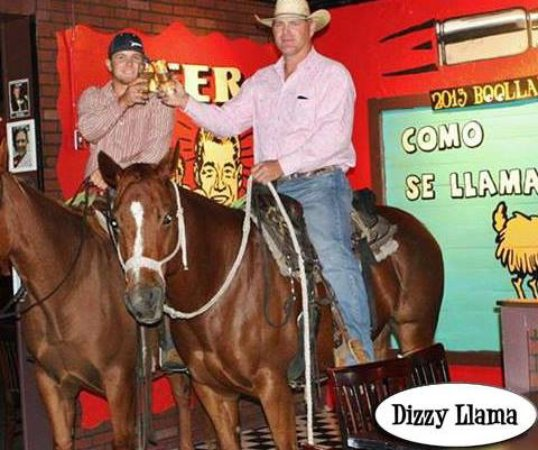 Navasota, TX: You never know what you'll see at the Dizzy Llama!
