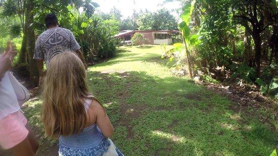 Patio, Французская Полинезия: la cocoteraie et la plantation