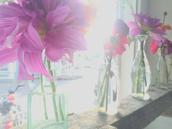 Deer Isle, Maine: Street Floral Arrangement