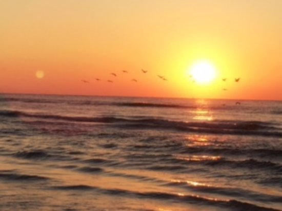 ‪‪Sandpiper RV Resort‬: Pelican Flight at sunrise on Stewart Beach while staying at the Sandpiper RV Park‬