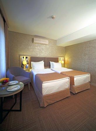 Hotel Polatdemir: Deluxe Room