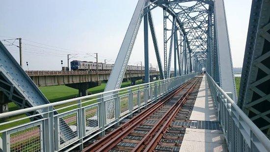 旧铁桥溼地教育园区