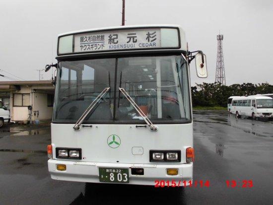 Yakushima Traffic