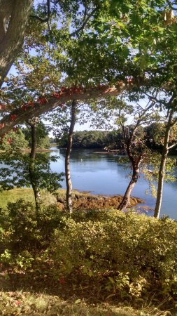 Bufflehead Cove Inn: The view from the deck during breakfast!