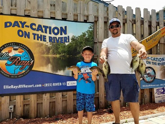 Branford, FL: Annual Fathers Day Pan Fish tournament