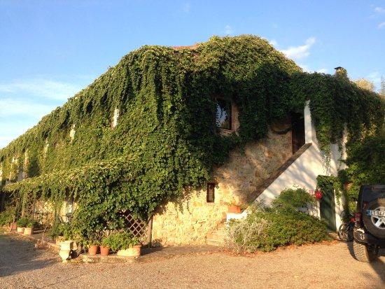 Monterotondo Marittimo-bild