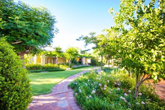 Upington, Sør-Afrika: Garden path