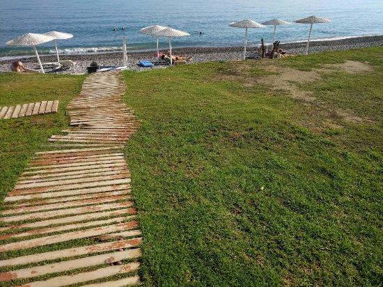 Grand Bay Beach Resort: Nicht einmal der Rasen war gepflegt
